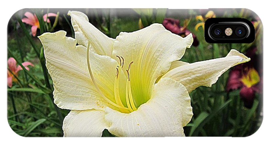 Daylily IPhone X Case featuring the photograph Guardian Angel Daylilies by MTBobbins Photography