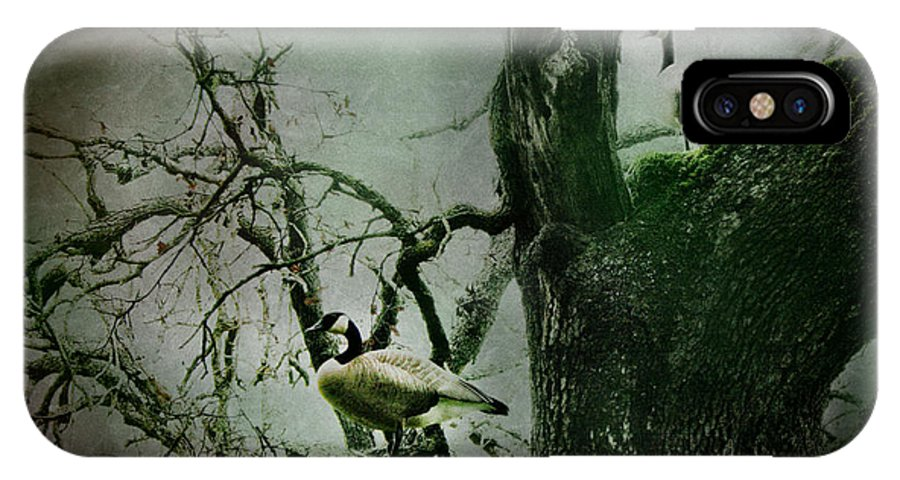 Geese IPhone X Case featuring the photograph Guardians by Sally Bauer
