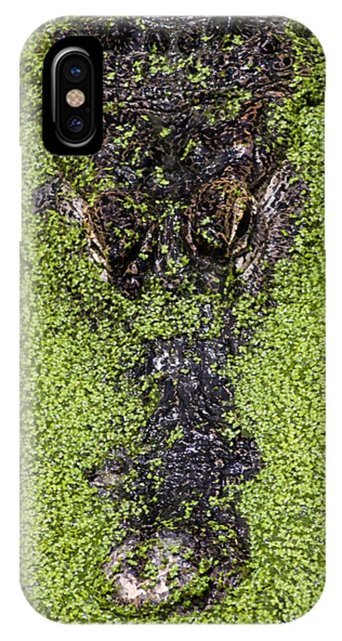 Alligator IPhone X Case featuring the photograph Gulf Coast Gator by Marcus Mapp Sr