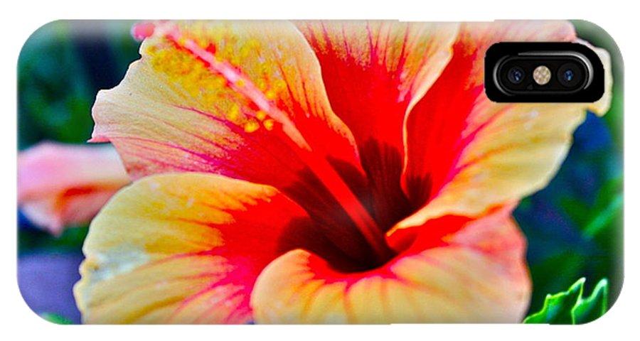 Gumamela IPhone X Case featuring the photograph Gumamela1 by Carol Tsiatsios