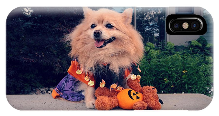 Dog IPhone X / XS Case featuring the photograph Halloween Dog by Charline Xia