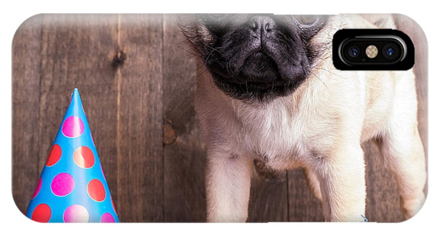 Dog IPhone X Case featuring the photograph Happy Birthday Cute Pug Puppy by Edward Fielding