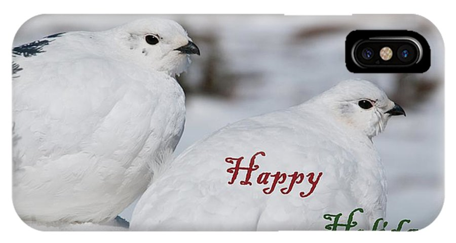 White-tailed Ptarmigan IPhone X Case featuring the photograph Happy Holidays - Winter Ptarmigan by Cascade Colors