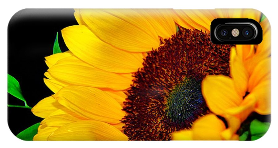 Happy Sunflower IPhone X Case featuring the photograph Happy Sunflower by Mariola Bitner