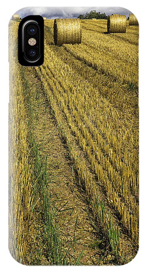 Harvest IPhone X Case featuring the photograph Harvest Time by Fran Gallogly