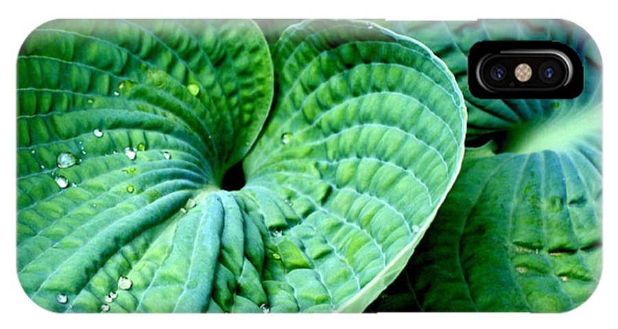 Hosta IPhone X Case featuring the photograph Have A Heart by Valerie Fuqua