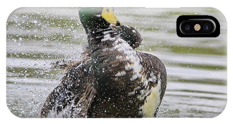 Duck IPhone X Case featuring the photograph Having A Moment by Deborah Benoit