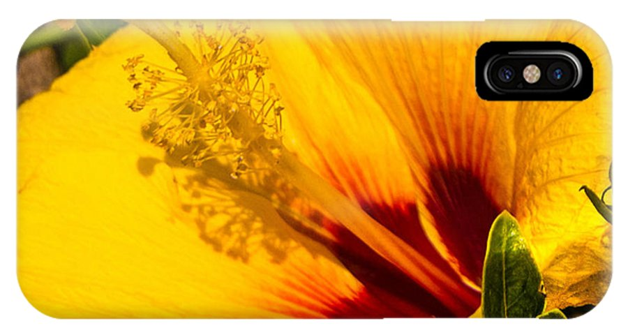 Hibiscus IPhone X Case featuring the photograph Hawaiian Hibiscus by Roy Bendell