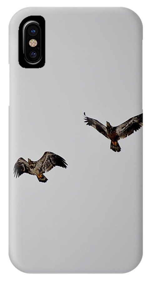 Red-tailed Hawk IPhone X Case featuring the photograph Hawk Joy by Thomas Phillips