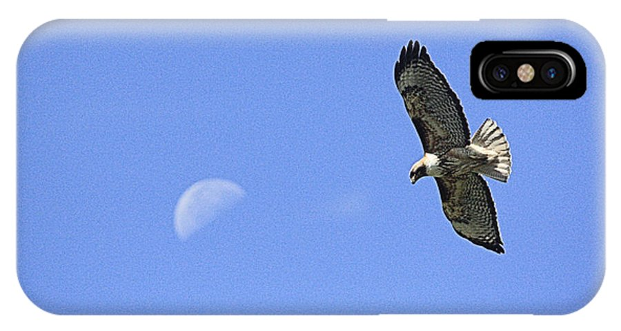 Moon IPhone X Case featuring the photograph Hawk Under The Moon by Ray Finch