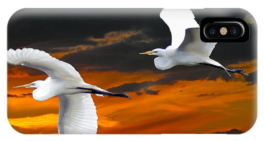 Egrets IPhone X Case featuring the digital art Heading Home by Mary Dreher