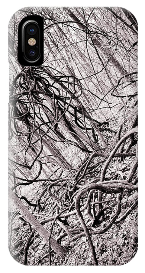 Landscape IPhone X Case featuring the photograph Heard It Through The Tree Vine by Brenna Schelle