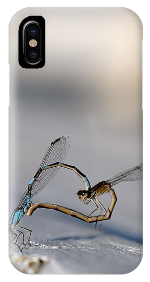 Damselfly IPhone X Case featuring the photograph Heart Of The Damselfly by Ian Ashbaugh