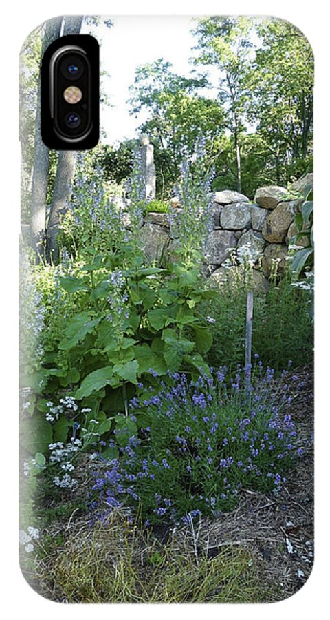 Garden IPhone X Case featuring the photograph Herb Garden by Design Online