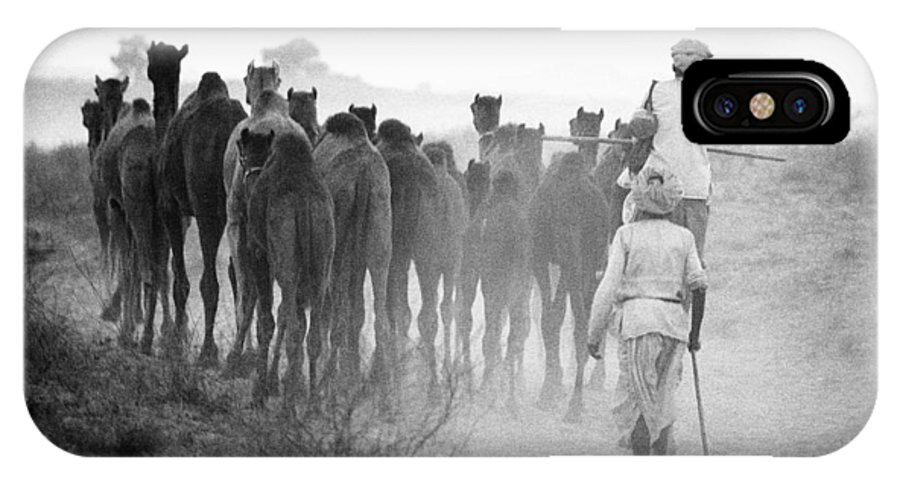 Herd Of Camels Pushkar Fair Rajasthan India Asia 1976 IPhone X Case featuring the photograph Herd Of Camels by Jagdish Agarwal