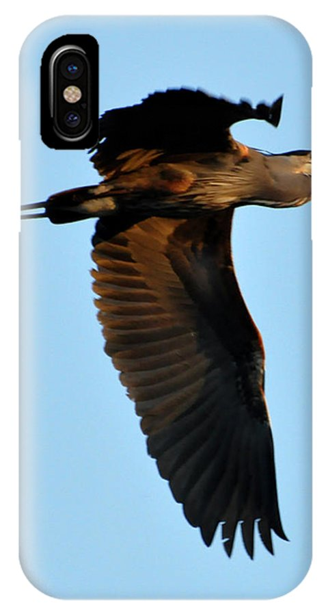 Great Blue Heron IPhone X Case featuring the photograph Heron 249a by David McDowell