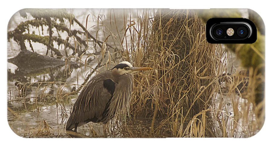 Heron In A Fog IPhone X Case featuring the photograph Heron In A Fog by Wes and Dotty Weber