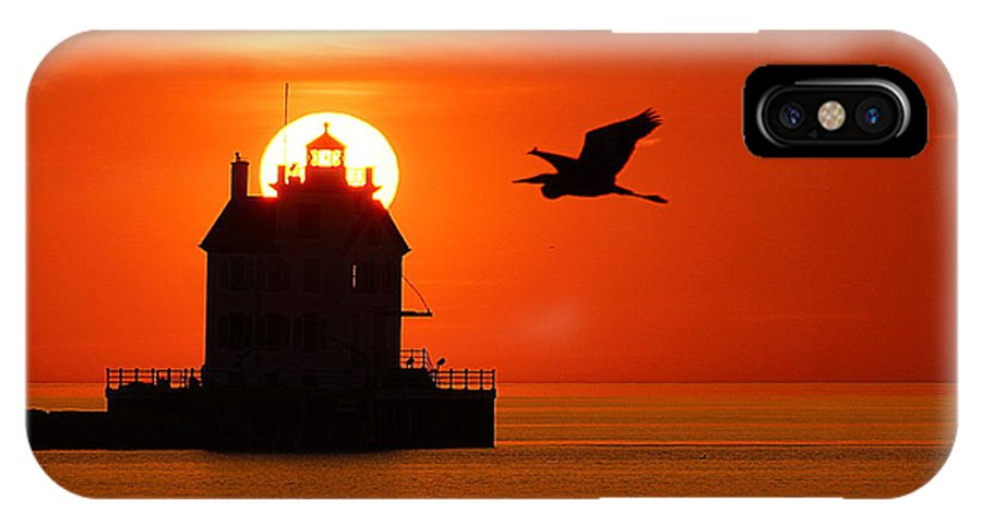 IPhone X Case featuring the photograph Herron At Sunset by Robert Bodnar