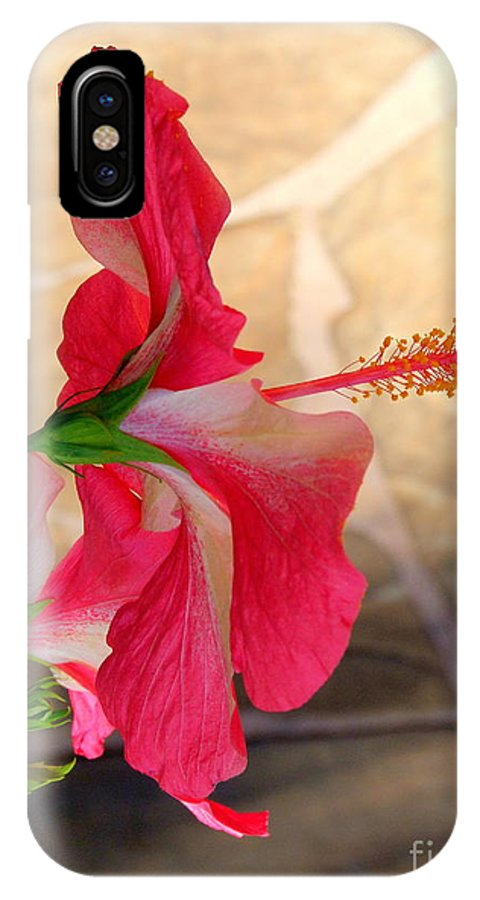 Flower IPhone X Case featuring the photograph Hibiscus Along The Walk Way by Mary Deal