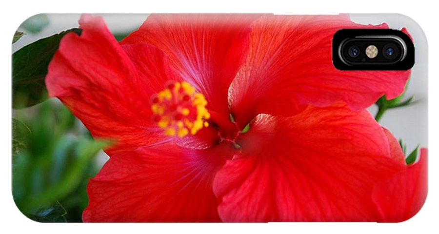 Hibiscus IPhone X Case featuring the photograph Hibisus Bloom by Mary Griffin