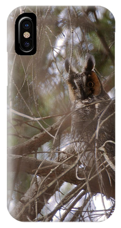 Long Eared Owl IPhone X Case featuring the photograph Hiding In The Trees by Tracy Winter