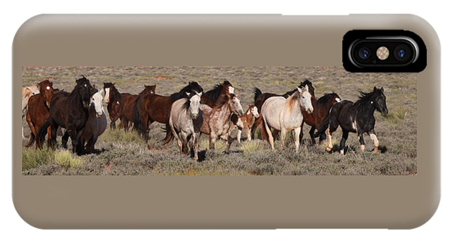 Mustangs Monument 2012 IPhone X Case featuring the photograph High Desert Horses by Diane Bohna