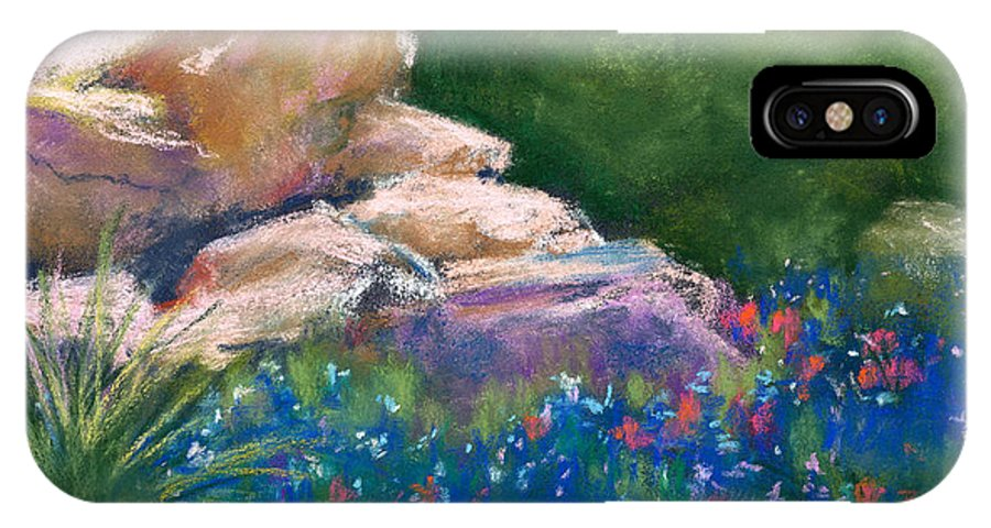 Landscape IPhone X Case featuring the painting Hill Country 2 by Cynthia Roudebush