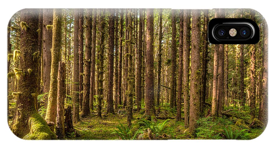 America IPhone X Case featuring the photograph Hoh Rain Forest by Rich Leighton