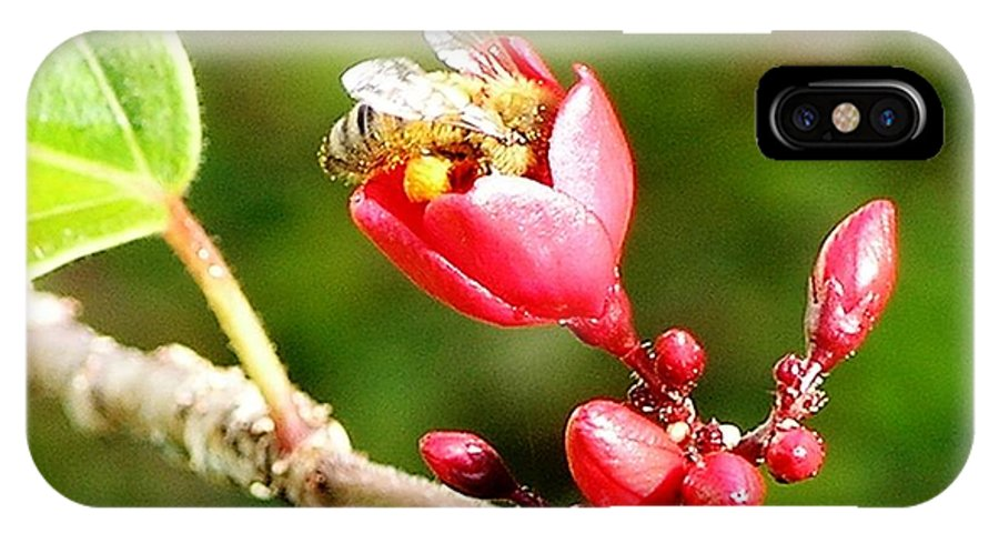 Red IPhone X Case featuring the photograph Honey Bee Loaded With Pollen by Mary Deal