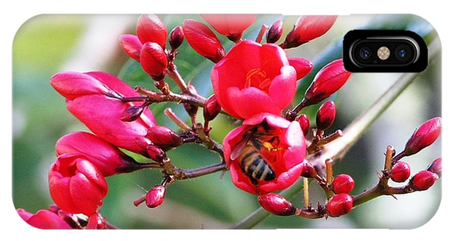 Red IPhone X Case featuring the photograph Honey Bee Working by Mary Deal