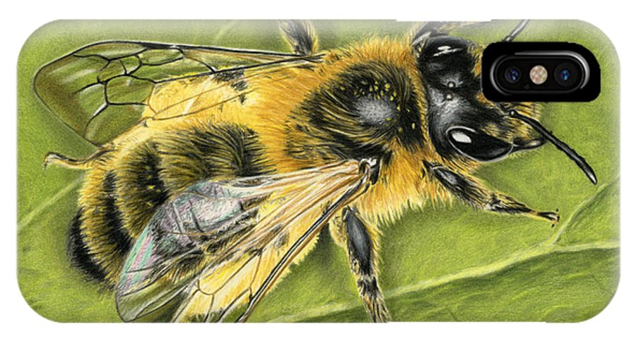 Bee IPhone X Case featuring the painting Honeybee On Leaf by Sarah Batalka