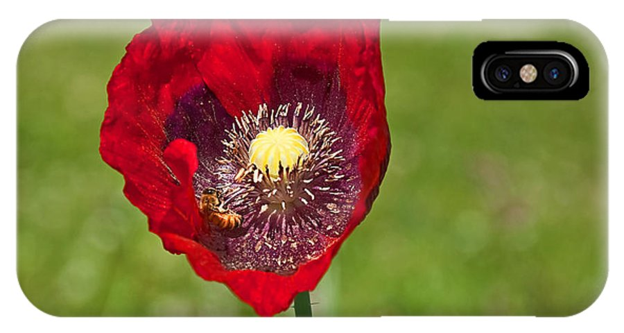 Nature IPhone X Case featuring the photograph Honeybee Pollinating An Oriental Red Poppy Flower by Valerie Garner
