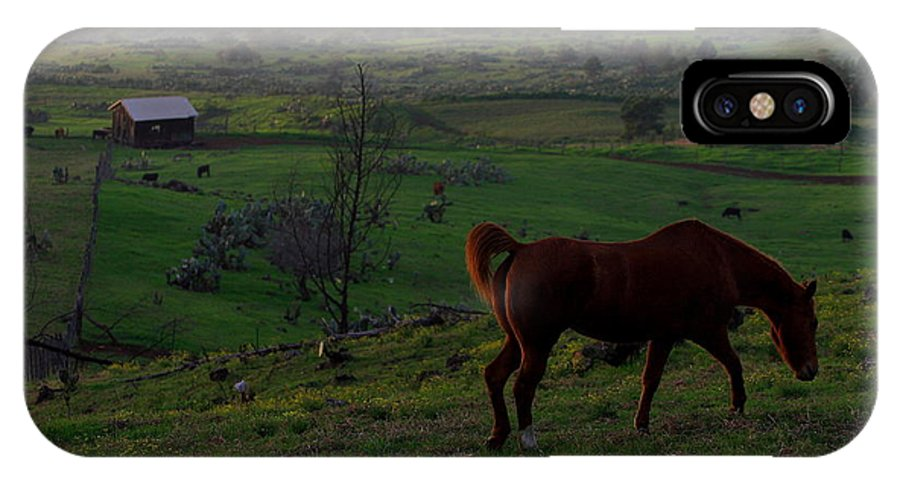 Horse IPhone X Case featuring the photograph Horse And Farmhouse by Richard Cheski
