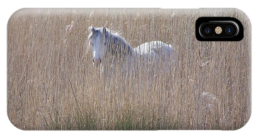 Horses IPhone X Case featuring the photograph Horse In The Grass by Christopher Rowlands
