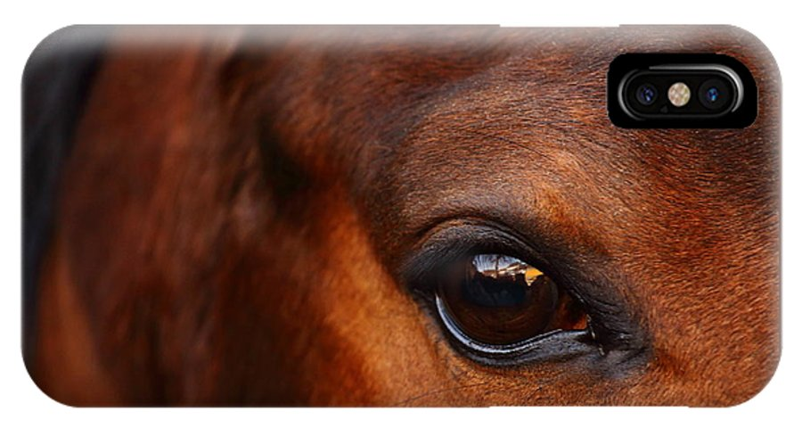 Horse IPhone X / XS Case featuring the photograph Soul Reflection by Timothy Lens Attack