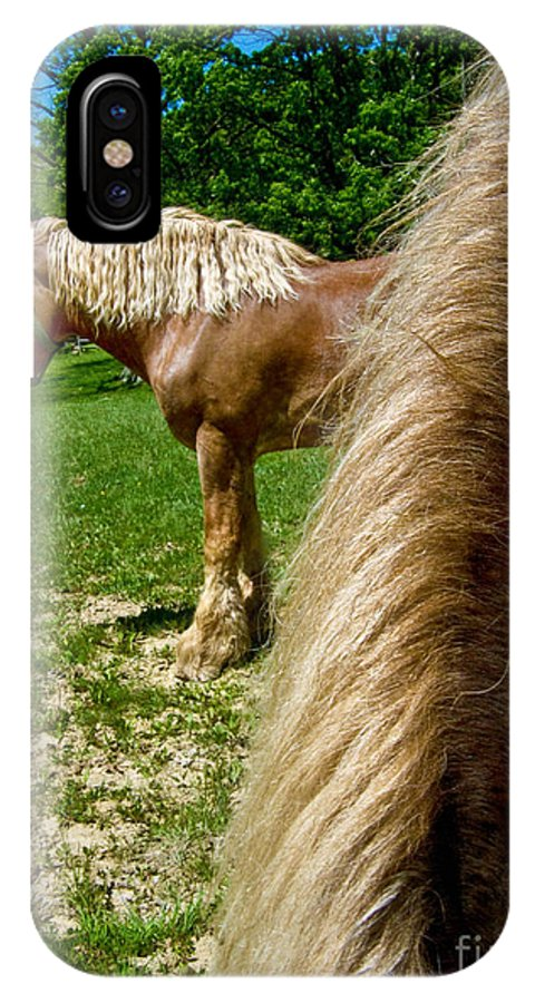 Animal IPhone X Case featuring the photograph Horses In Meadow by Amy Cicconi