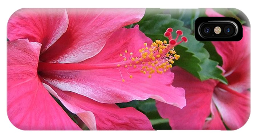 Pink IPhone X Case featuring the photograph Hot Pink Hibiscus 2 by Mary Deal