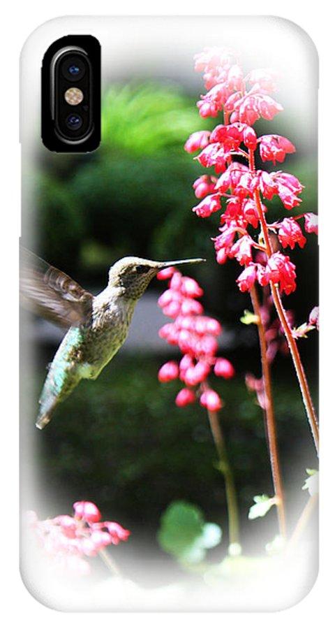 Bird IPhone X Case featuring the photograph Hummingbird 2 by Steven Baier