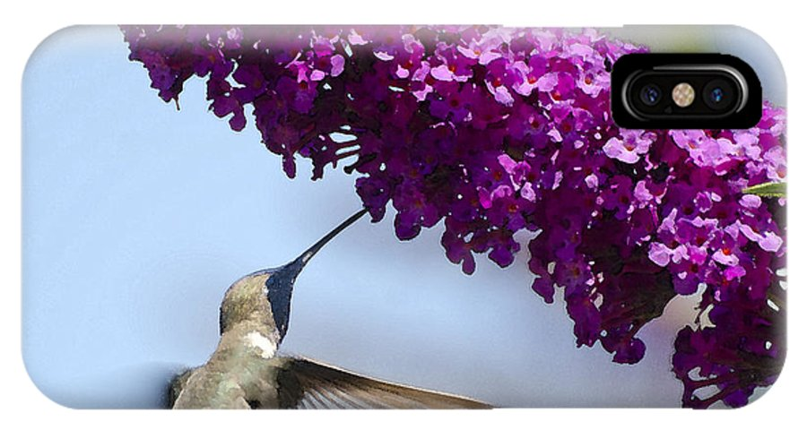 Hummingbird IPhone X Case featuring the photograph Hummingbird And Flower by Jim And Emily Bush