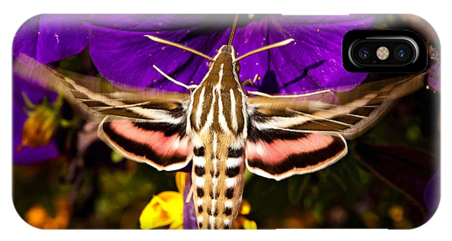 Moth IPhone X Case featuring the photograph Hummingbird Moth  #8645 by J L Woody Wooden