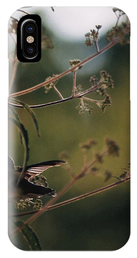 Hummingbird IPhone X Case featuring the photograph Hummingbird Silouette by Cynthia Syracuse