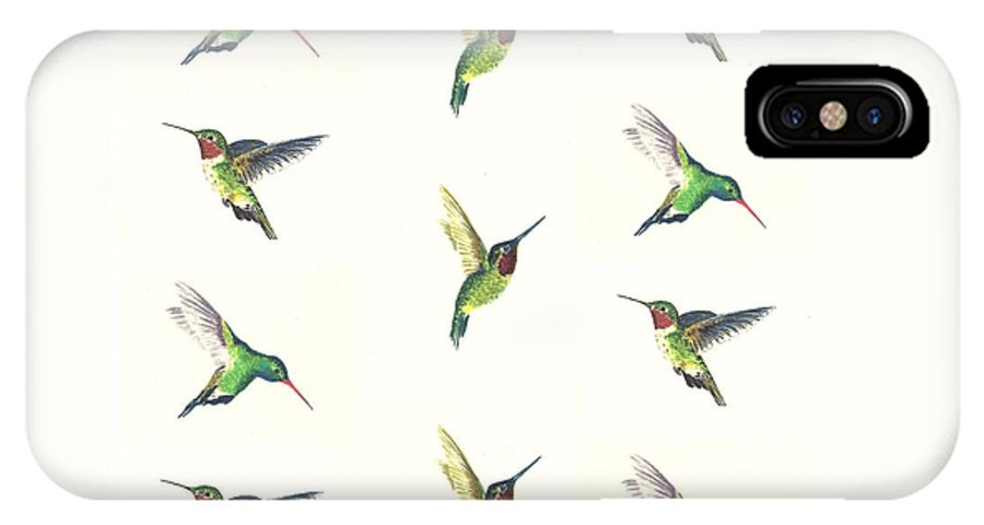 Animals IPhone X Case featuring the painting Hummingbirds Number 2 by Michael Vigliotti