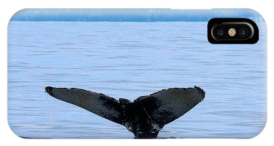 Wildlife IPhone X Case featuring the photograph Humpback In Monterey by Steven Baier
