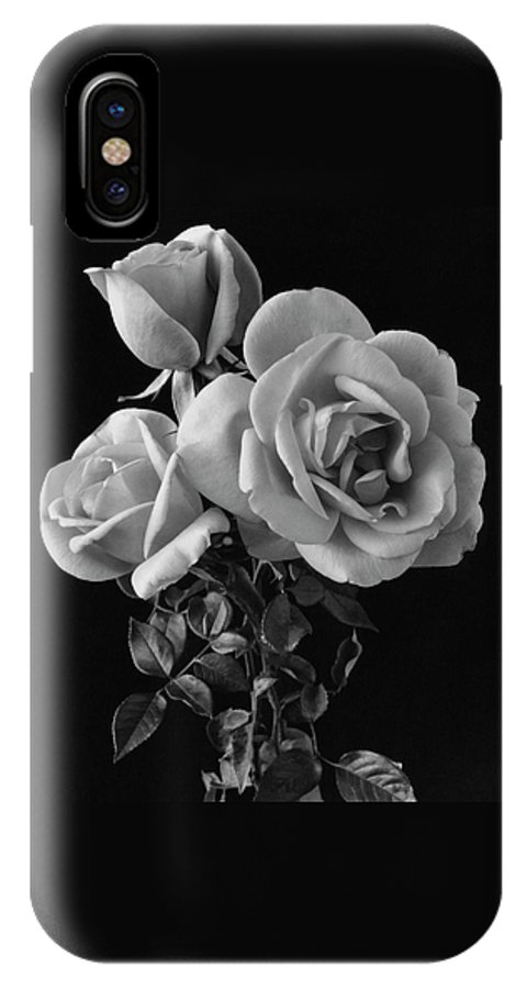 Plants IPhone X Case featuring the photograph Hybrid Tea California Roses by Edwin T. Merchant