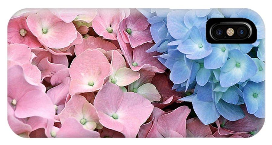 Hydrangeas IPhone X / XS Case featuring the photograph Hydrangeas by Ira Shander