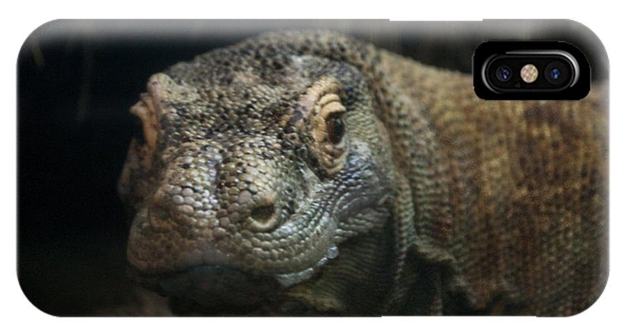 Lizard IPhone X Case featuring the photograph I Am Ready For My Close-up by Rich Priest