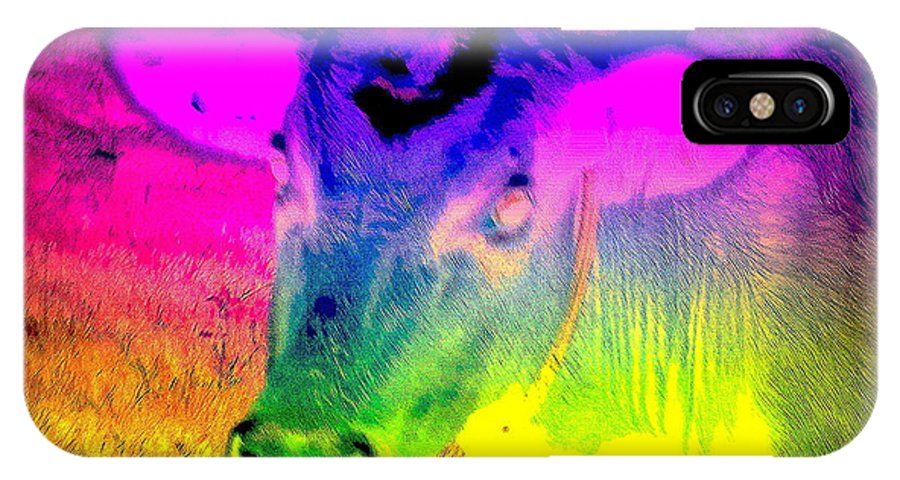 Cow IPhone X Case featuring the photograph I Think I Am The Most Colorful Cow You Know by Hilde Widerberg
