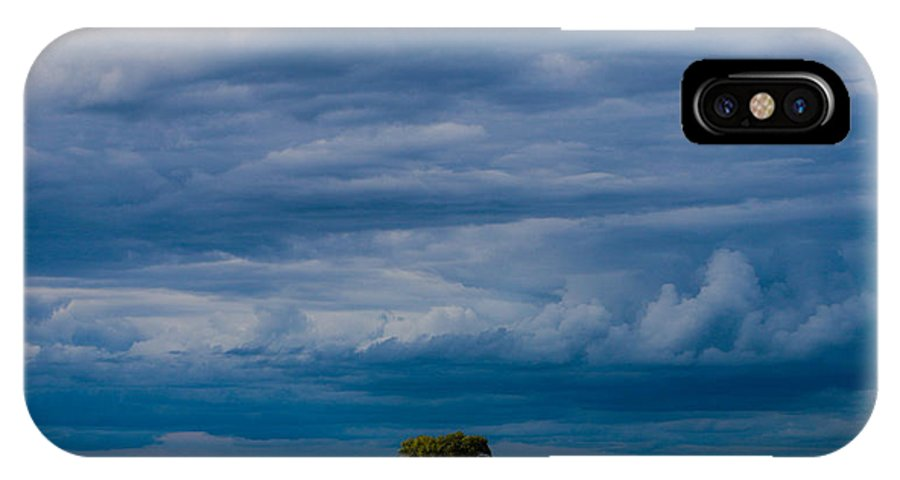 Tree IPhone X Case featuring the photograph I Stand Alone by Lisa Holland