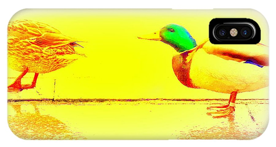 Duck IPhone X Case featuring the photograph I Try To Follow You But Do You Care by Hilde Widerberg