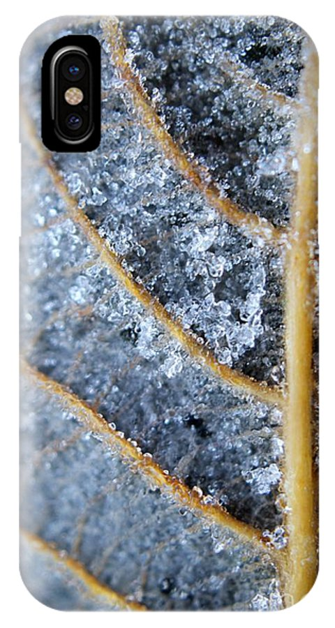 Winter IPhone X Case featuring the photograph Ice Crystals On Leaf by Brian Raggatt